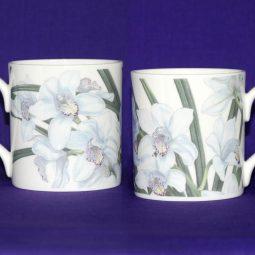 White Cymbidium Orchid Bone China Mug