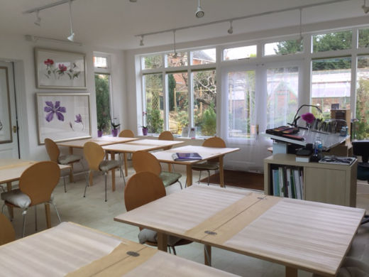 Ann Swan studio