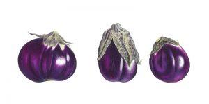 Aubergine Trio