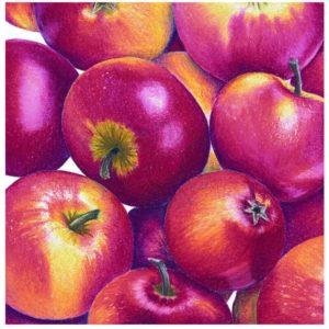 Apples 'Crockett's Red'