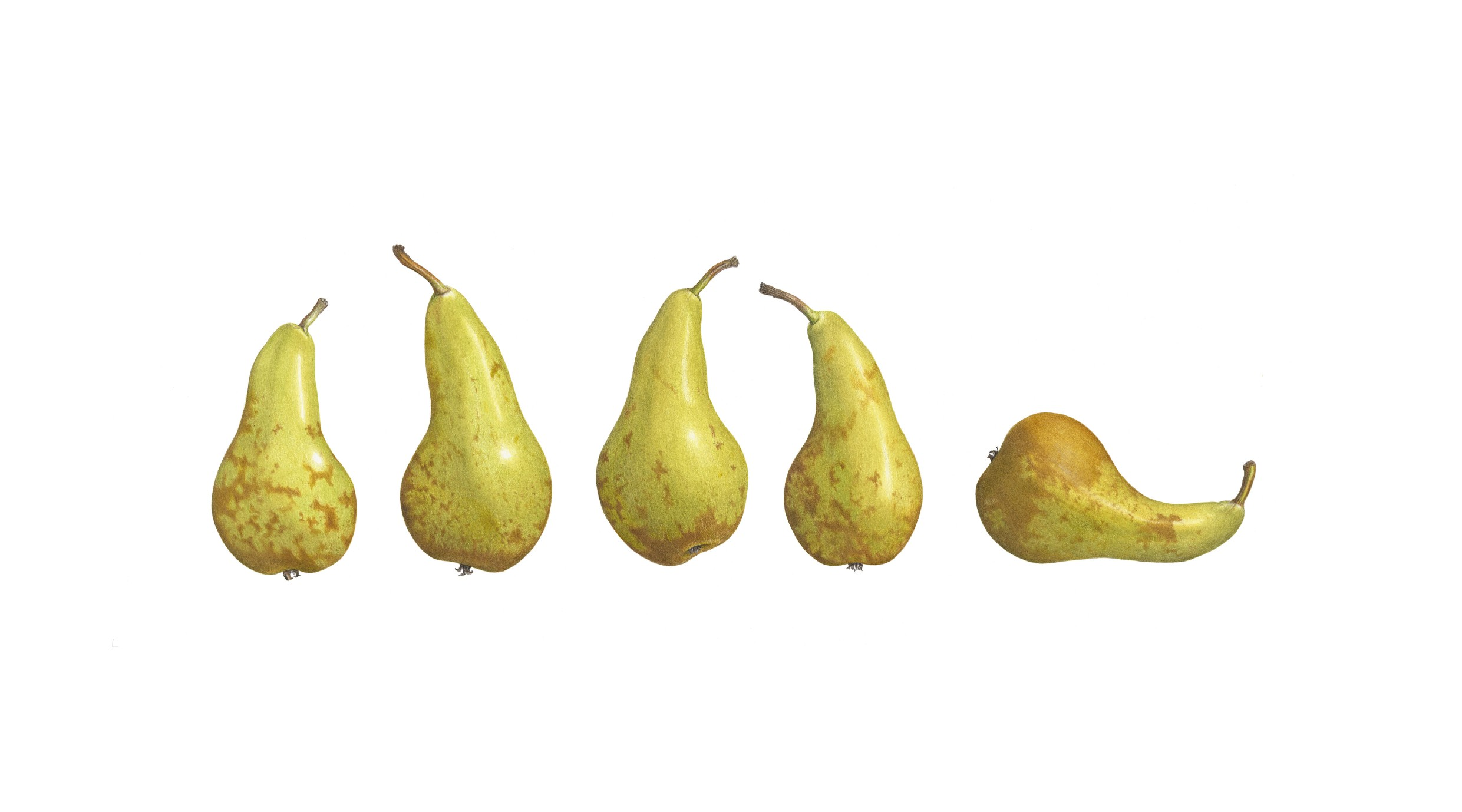 five-pears-smaller