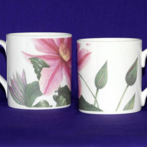 Clematis Bee's Jubilee Bone China Mug