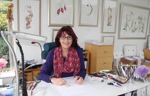 Ann Swan botanical artist