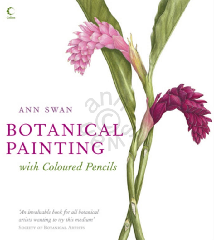 Botanical-Painting-with-Coloured-Pencils-Hardcover-Book