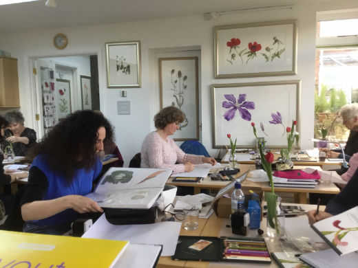 Botanical art workshops