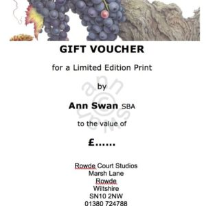 £25 Gift Voucher with Gift Card by Post