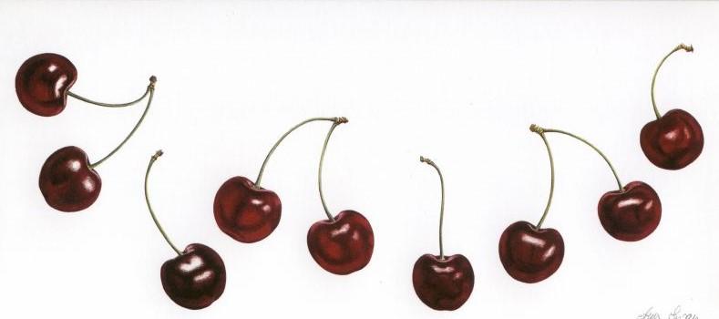 Dancing Cherries